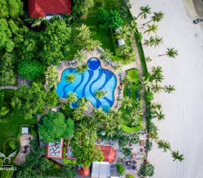 drone shot pool and palm trees