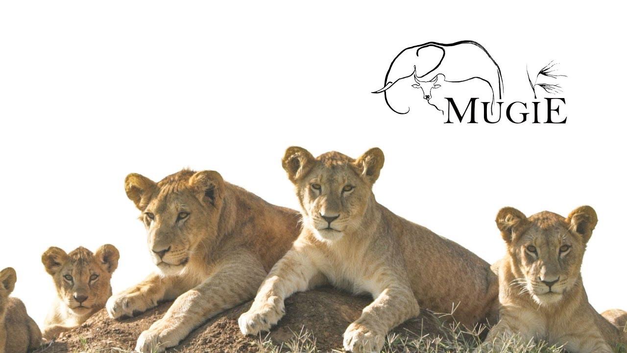 MUGIE Conservancy-  Laikipia, Kenya